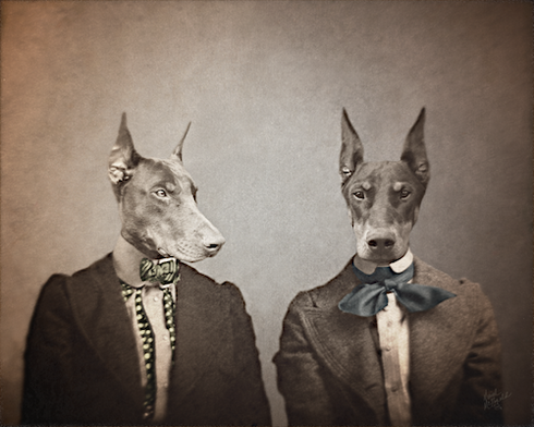 the-doberman-sisters-mrm-created-3-25-15